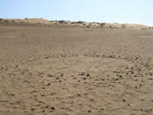 IMG 0493 - Grascirkels Sossusvlei