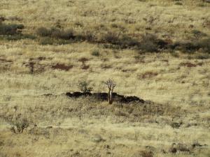 IMG 0875 - Krater Brukkaros vulkaan