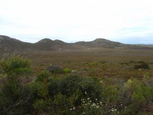 IMG 1531 - Onderweg naar Kaap De Goede Hoop
