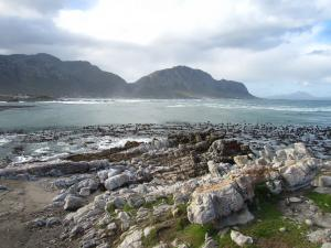IMG 1743 - Pinguinkolonie Bettys Bay