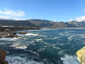 IMG 1776 - Walvisspotten in Hermanus