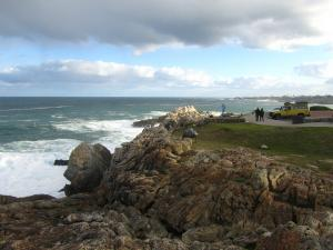 IMG 1778 - Walvisspotten in Hermanus