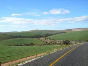 IMG 1802 - Onderweg naar Cape Agulhas