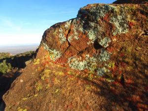 IMG 2014 - Valley of Desolution Camdeboo NP