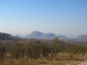 IMG 2325 - Kruger NP