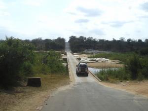 IMG 2437 - Kruger NP
