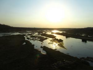 IMG 2489 - Kruger NP
