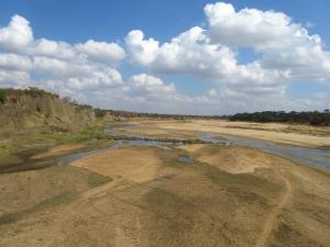 IMG 2515 - Kruger NP
