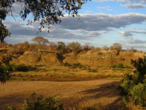 IMG 2646 - Kruger NP