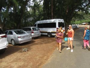 IMG 3490 - De dames en een vervetaap bij Cape Vidal