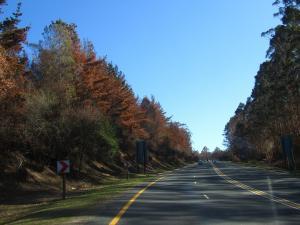 IMG 3607 - Onderweg naar Kaapstad