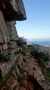 20170825 161710 - Afdalen van Lions Head Kaapstad